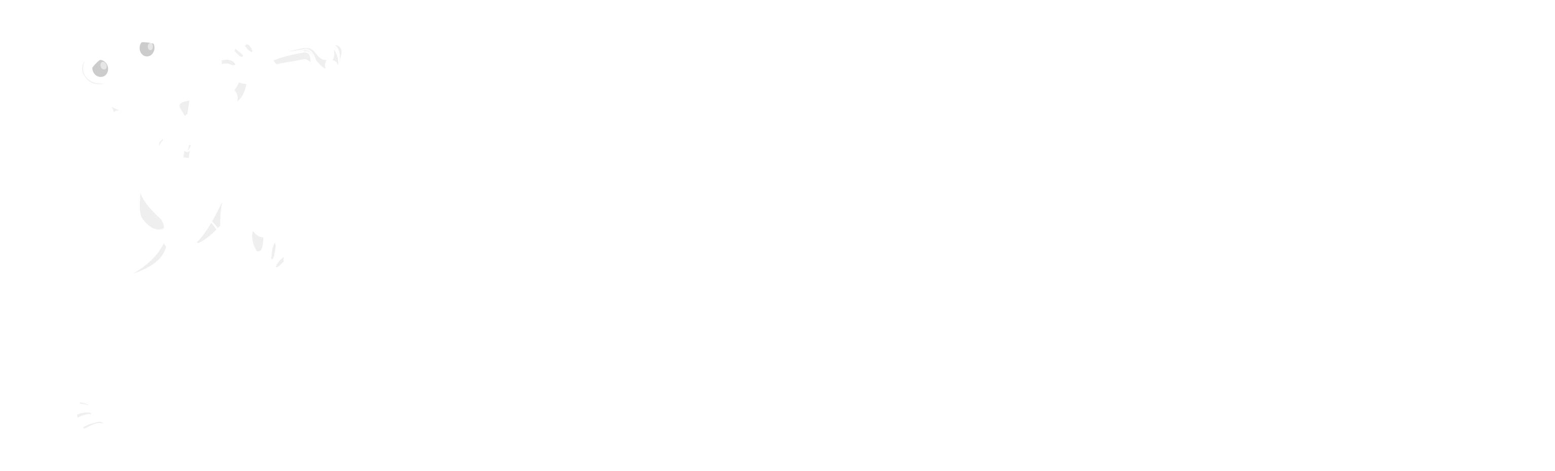 California Dance Cooperative